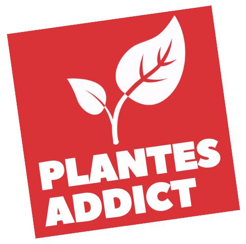 Plantes Addict